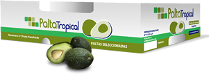 Palta Tropical
